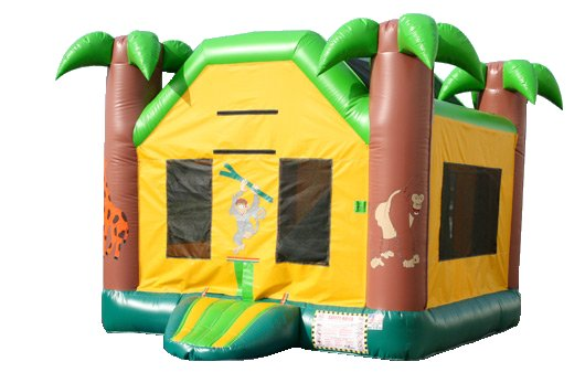 Mini Jungle Tropical Palm Tree Bouncer Slide Combo Rental Chicago
