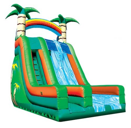 Island Falls Double-Lane Tropical Jungle Palm Tree Slide Rental Chicago