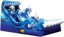Dolphin Bay Splash Ocean Wave Water Slide Rental Chicago